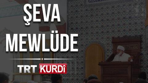 Şeva Mewlüde TRT KURDİ