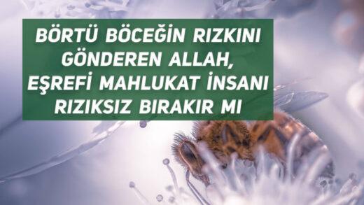 Börtü Böceğin Rızkını Gönderen Allah, Eşrefi Mahlukat İnsanı Rızıksız Bırakır mı